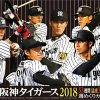 阪神タイガース2018スタメン予想!開幕投手や先発ローテは?